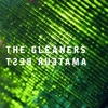 Amateur Best - The Gleaners