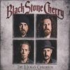 Black Stone Cherry - The Human Condition