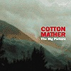 Cotton Maher - The Big Picture
