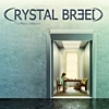 Crystal Breed - The Place Unknown