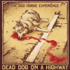 The Dad Horse Experience - Dead Dog On A Highway