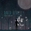 David Berkeley - The Fire In My Head