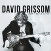 David Grissom - How It Feels To Fly
