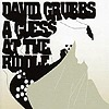 David Grubbs - A Guess At The Riddle