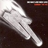 Die Haut And Nick Cave - Burnin' The Ice