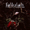 Fallulah - The Black Cat Neighbourhood
