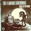 The Flaming Sideburns - Back To The Grave