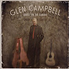 Glen Campbell - Ghost In The Canvas