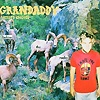 Grandaddy - Below The Radio
