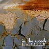In The Woods - Live At The Caldonienhall