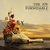 Joy Formidable - Wolf's Law