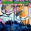 Kommando Sonne-Nmilch - You Pay I Fuck
