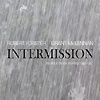 Robert Forster & Grant McLennan - Intermission - The Best Of Solo Recordings 1990-1997