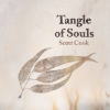 Scott Cook - Tangle Of Souls
