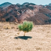 SYML - The Hurts EPs