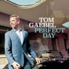 Tom Gaebel - Perfect Day