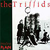 The Triffids - Black Swan / Treeless Plain / Beautiful Waste And Other Songs