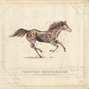 Turnpike Troubadours - A Long Way From The Heart