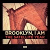 The Satellite Year